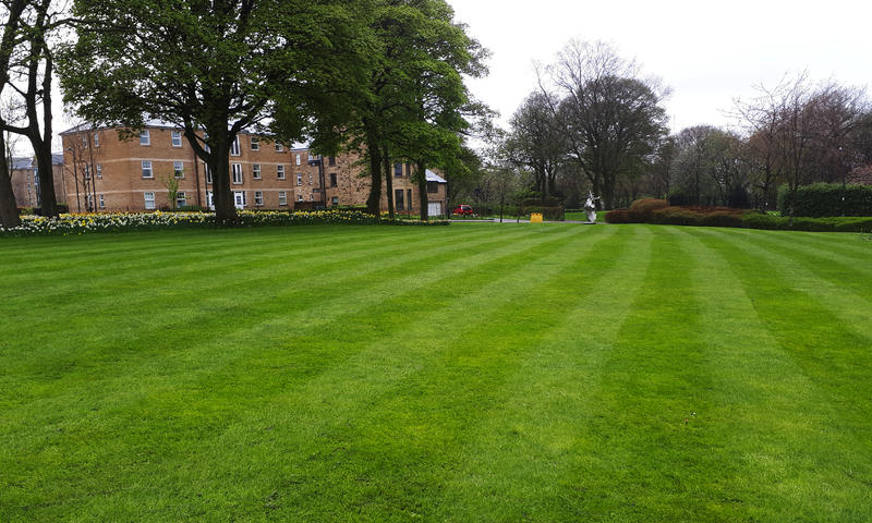 freshly cut field in sheffield