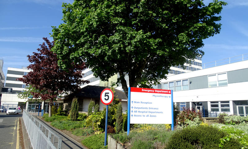 tree at the entrance of Barnsley Hospital